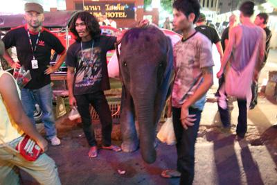 バンコク市内の象