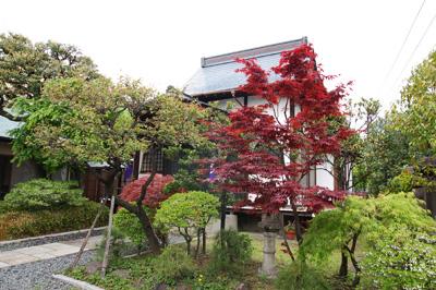 麻布のお寺