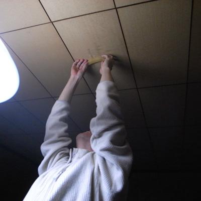 カズノコを天井に貼り付けるマッチー