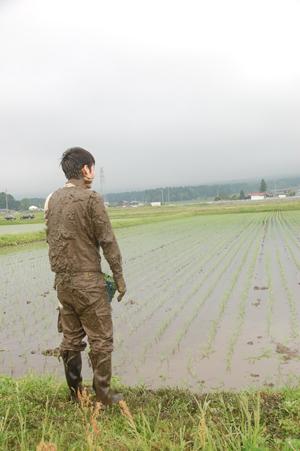田植機と田圃